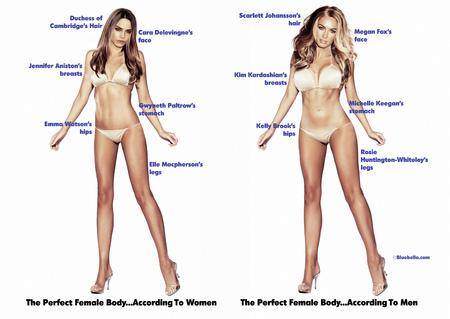 perfect-female-body_1.jpg